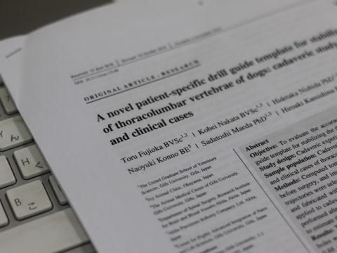 投稿論文、学会発表