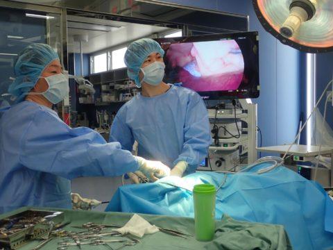 内視鏡外科・低侵襲手術